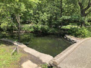 100 均 公園 石神井